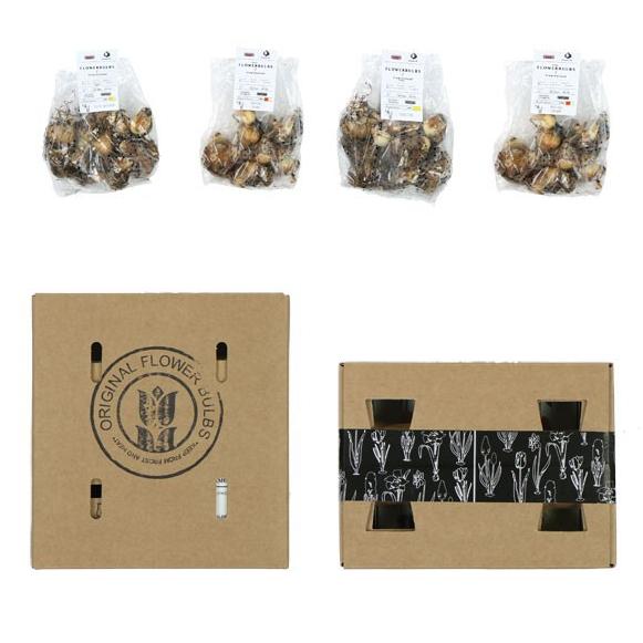 Bloembollenpakket als relatiegeschenk